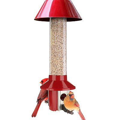 roamwild cardinal feeder
