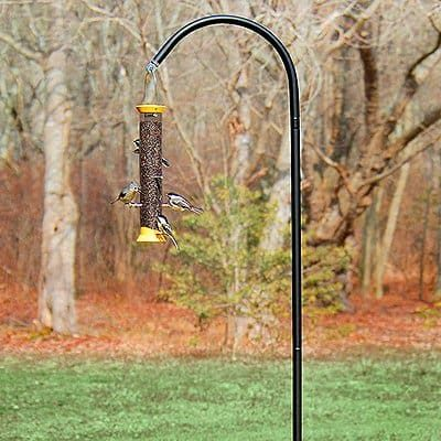 droll yankees bird feeder pole