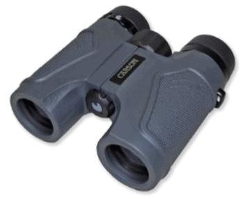 grey binoculars
