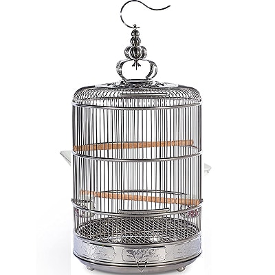 bird cage on a white background