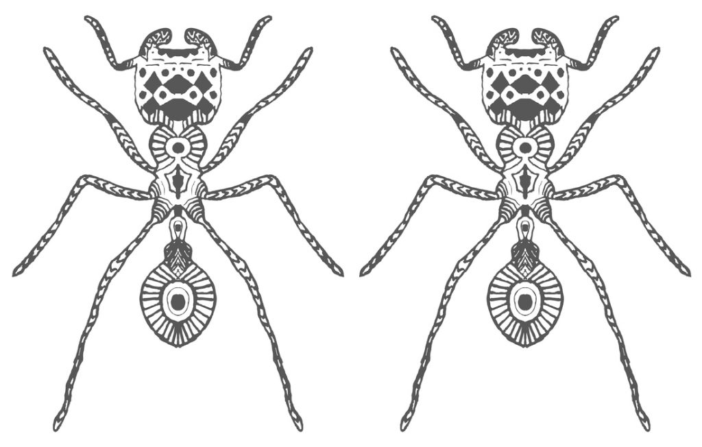 illustration of two ants