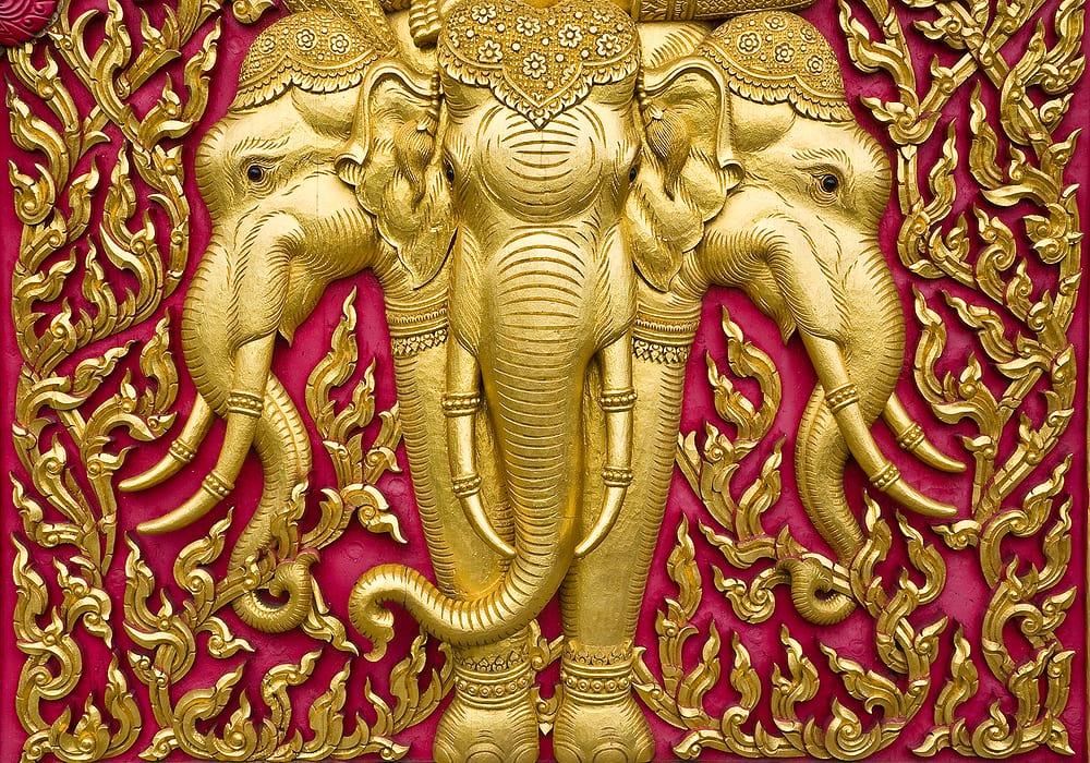 elephant form