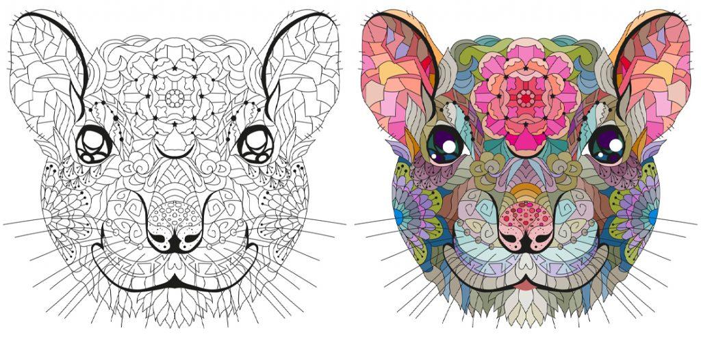 illustration of two rat heads