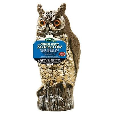 fake owl decoy