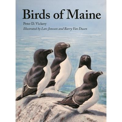 birds of maine book