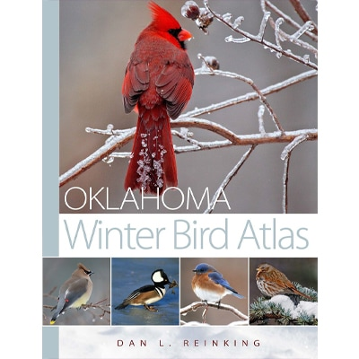 oklahoma winter bird guide