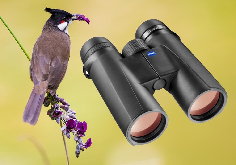 bird and zeiss binoculars