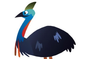 Cartoon Cassowary Profile